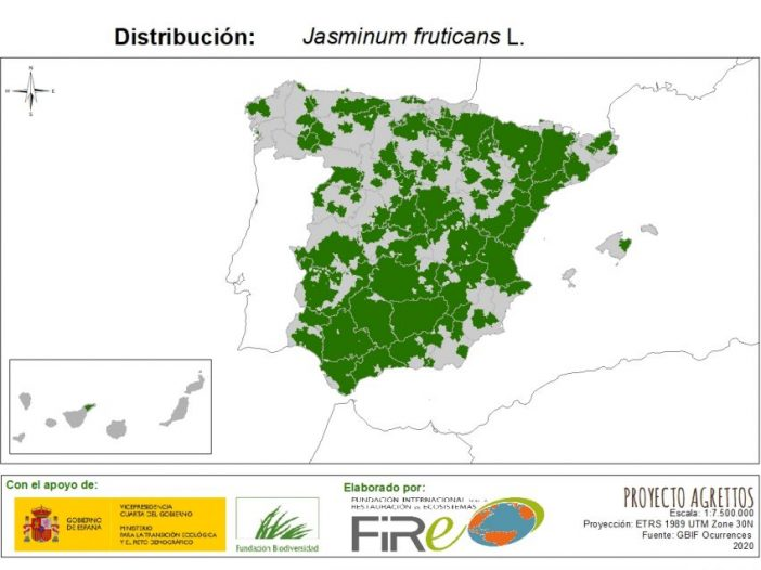 Mapa de distribución Jasminum fruticans