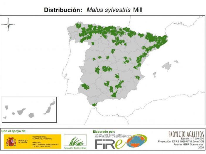 Mapa de Distribución de Malus sylvestris