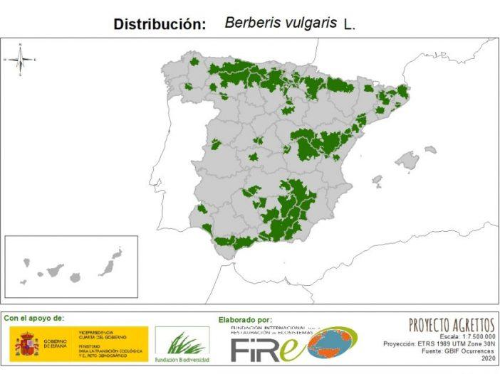 Mapa de distribución Berberis vulgaris