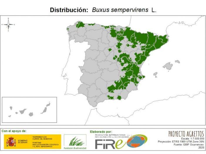 Mapa de Distribución de Buxus sempervirens