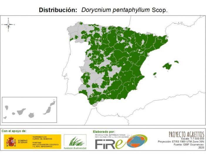 Mapa de Distribución de Dorycnium pentaphyllum