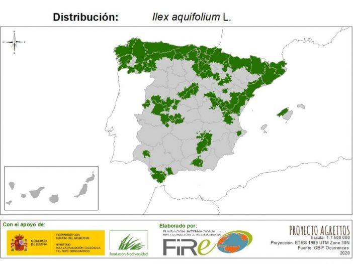 Mapa de distribución de Ilex aquifolium L.