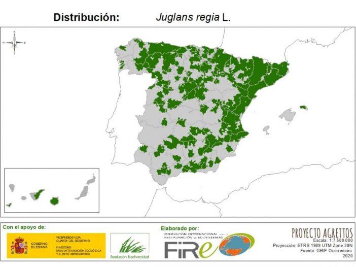 Mapa de distribución de Juglans regia L.