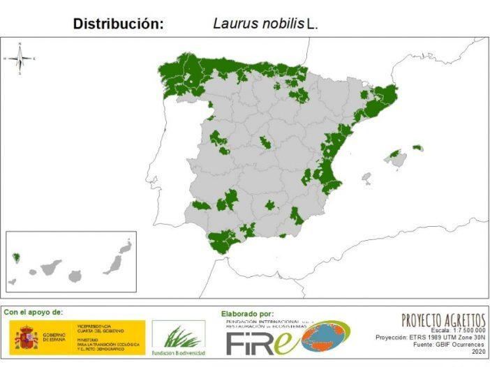Mapa de distribución de Laurus nobilis L.
