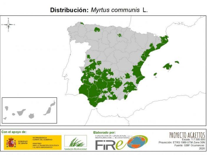 Mapa de distribución de Myrtus communis L.
