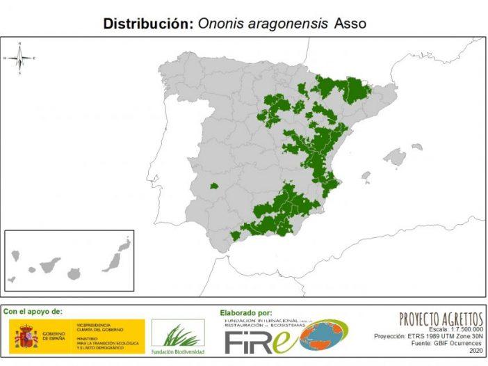 Mapa de distribución de Ononis aragonensis Asso
