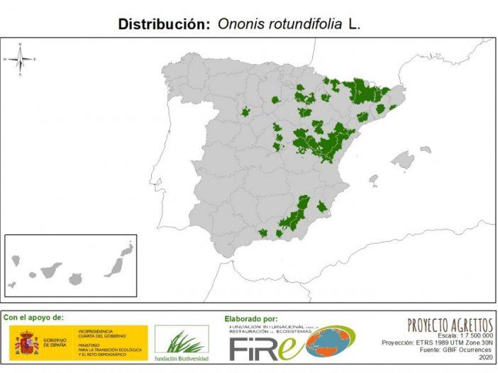 Mapa de distribución Ononis rotundifolia L.