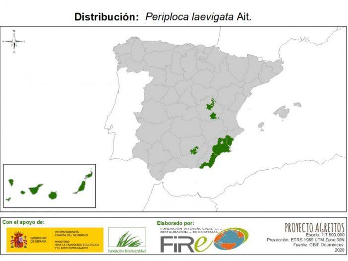 Mapa de distribución Periploca laevigata Ait.