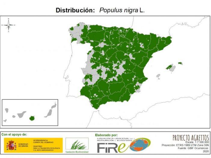 Mapa de distribución Populus nigra L.