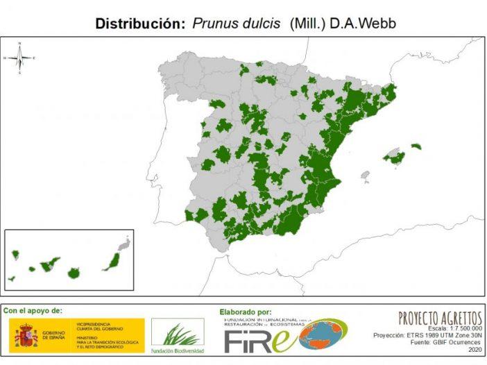 Mapa de distribución Prunus dulcis (Mill.) D.A.Webb