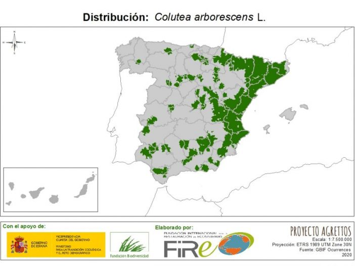 Mapa de distribución de Colutea arborescens