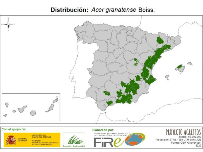 Mapa de distribución Acer granatense Boiss.