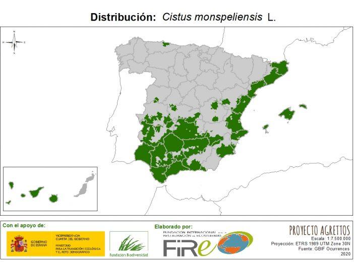 Mapa de distribución de Cistus monspeliensis L.