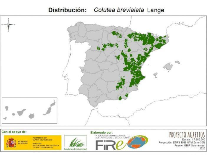Mapa de distribución Colutea brevialata Lange