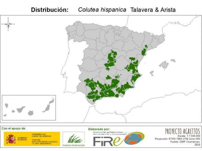 Mapa de distribución Colutea hispanica Talavera & Arista