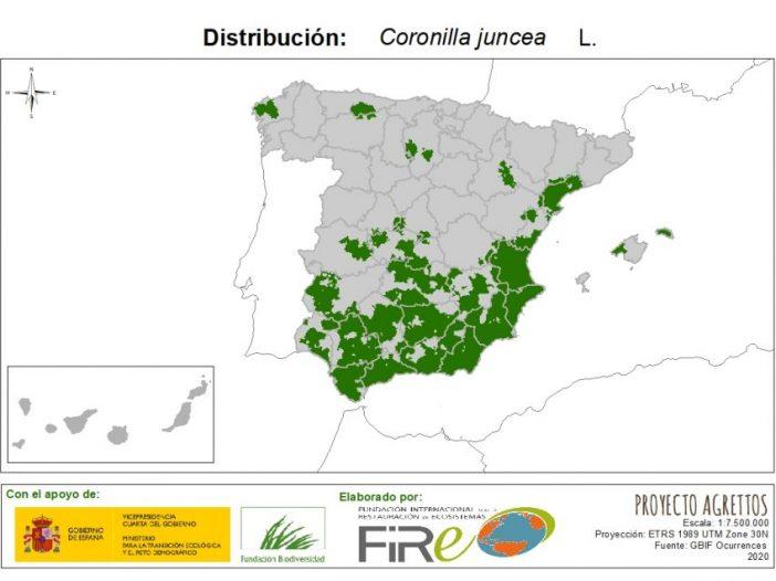 Mapa de distribución Coronilla juncea L.