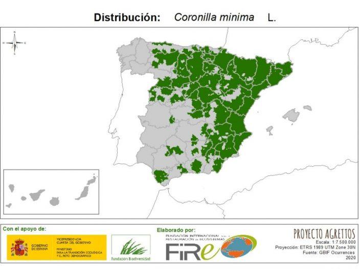 Mapa de distribución Coronilla minima