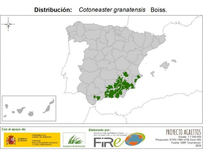 Mapa de distribución Cotoneaster granatensis