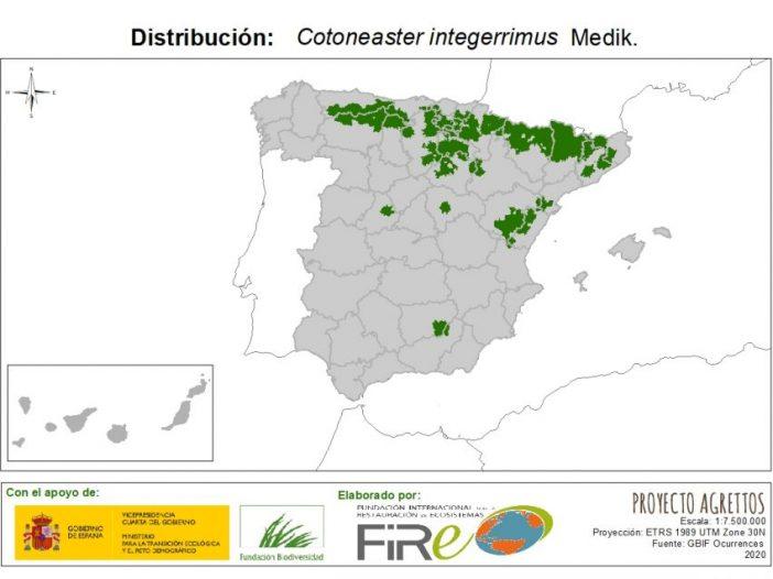 Mapa de distribución Cotoneaster integerrimus