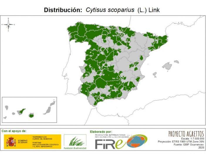 Mapa de distribución Cytisus scoparius (L.) Link