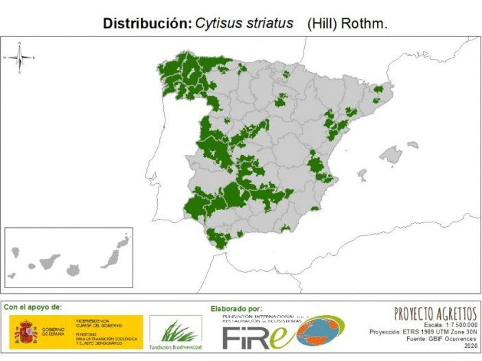 Mapa de distribuciónCytisus striatus