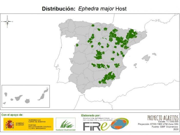 Mapa de distribución Ephedra major Host