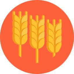 Iconos Herbaceos