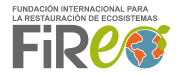 Logo Fire Corporativo